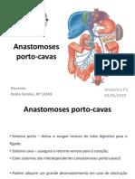 Anastomoses Porto Cavas