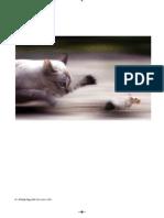 A. JAPPE - El gato, el ratón, la cultura y la economía.pdf
