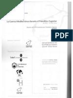 Upper Paleolithic subsistence organization
