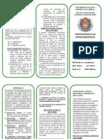 TRIPTIKO DE DEFENSA2.docx