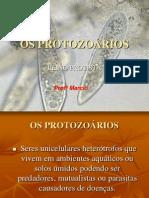 Os Protozoa Rios