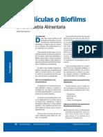 Biopeliculas o Biofilms en La Industria Alimentaria