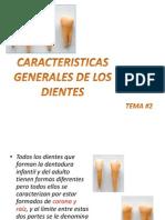 Tema 2 Generalidades de Los Dientes