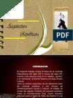 ARQUITECTURA REPUBLICANA modificado
