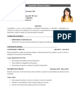 Modelo de CV Bolsa de Trabajo