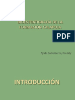 101907630 Bioestratigrafia Fm Calapuja
