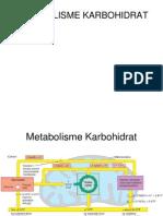 Metabolisme Karbohidrat Glikolisis