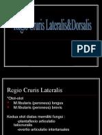 Regio Cruris Lateralis & Dorsalis