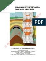 2013maighid de Analiza Si Interpretare a Diagrafiilor Geofizice