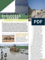 Ganado y Cambio Climatico Resumen