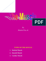 2. MUSCLE1