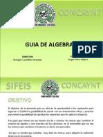 Sifeis Concaynt - Guía de Algebra