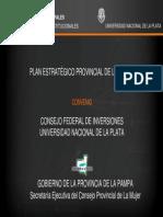 Plan Estrategico Provincial de La Mujer La Pampa 2012