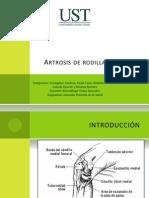 apsgonartrosisdefinitivo-110928202136-phpapp01