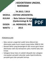 Batu Saluran Urogenital (Epidemiologi&Faktornutrisi)