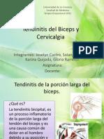 Tendinitis Del Biceps y Cervicalgia