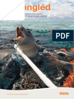 Reporte Desenredado WPSA Año 2012 Versión Inglés