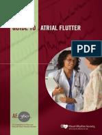 Guide Atrial Flutter