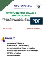 Oportunidades Iguais e Ambiente Legal_Palestra 2013_FEG_Ucama