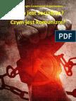czym-jest-socjalizm-czym-jest-komunizm-2011.pdf