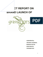Final Edited Report Grassroots25thOctober-3yoyo
