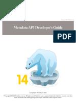 Salesforce meta data API