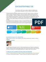 Plan de Vida Sustentable de Unilever