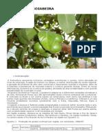 Cultura da Goiabeira - EMBRAPA.pdf