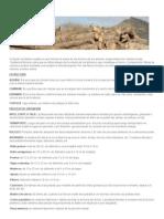 DEFINICIÓN _ Madera « Puro Diseño Industrial