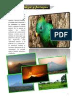 album.pdf