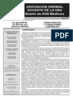 Boletín AGD1