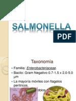 salmonella3[1]