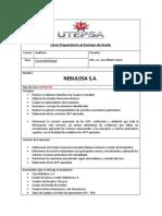 1 Caso Problema (Contabilidad) Empresa Nebulosa s.a.formato Nuevo