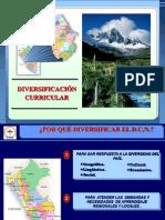 diversificacion-comunicacic3b3n