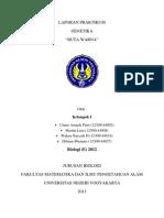 LAPORAN PRAKTIKUM BUTAWARNA.docx