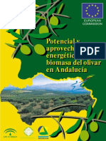 Aprovechamiento Del Biomasa