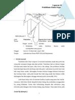 Percobaan 4 Dan 5. Pemisahan Piperin Dari Lada Hitam