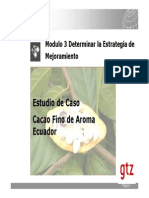 19 Estudio de Caso Cacao Ecuador