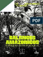 Balances Amazónicos.pdf