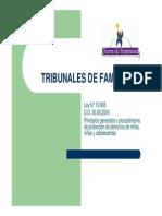 Tribunales de Familia_principios Generales