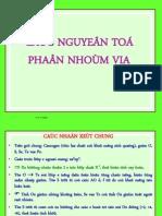 C7 NhomVIA Copy