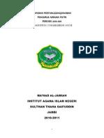 LPJ PUTRI 2010-2011