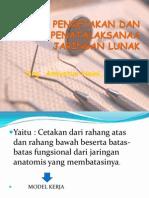 3. Drg. Amiyatun