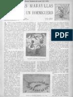 Las Maravillas de Un Hormiguero (1923) [Artículo]