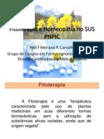 Fitoterapia e Homeopatia No Sus Pnpic (1)