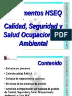 Fundamentos Hseq 2014-02-08