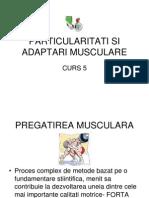 Musculatie Curs 5