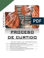 CAPÍTULO 7. Proceso de Curtiembre.pdf
