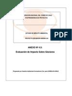EIA ANDINA 244 - Anexo 4.5 - Evaluacion de Impacto Sobre G