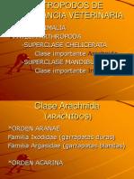 ectoparasitos-090908153211-phpapp01